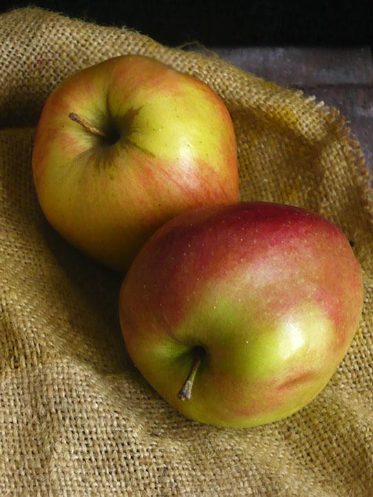 chleb z jabłkami