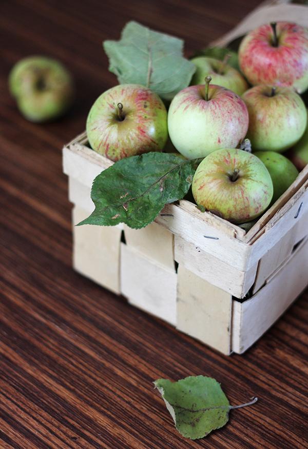 chleb jabłkowy