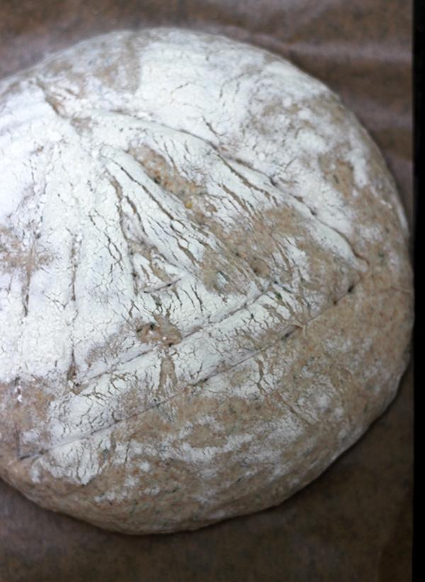 chleb ziemniaczany na zakwasie